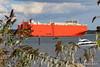 GLOVIS COUGAR Departing Southampton PDM 29-08-2016 17-15-52