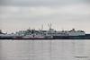 BOHEME SAND FALCON RED OSPREY Southampton PDM 15-03-2017 10-34-37