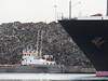 Dredgers FRIGG & RIND with bow NYK ORION PDM 07-03-2014 17-47-57