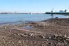 Husbands Shipyard Slipways Gone EDDYSTONE Marchwood PDM 18-02-2017 13-41-46