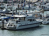 RIFLEMAN Cowes PDM 06-06-2014 16-35-25