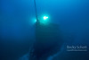 Bow of the Alice Wilds Shipwreck