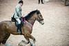 Shire-Horse-Show-18-067