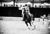 Shire-Horse-Show-18-499