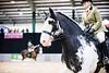 Shire-Horse-Show-18-496