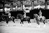 Shire-Horse-Show-18-490