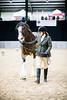 Shire-Horse-Show-18-457