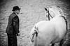 Shire-Horse-Show-18-060