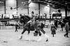 Shire-Horse-Show-18-492
