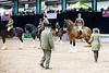 Shire-Horse-Show-18-491