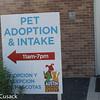 Austin Animal Shelter