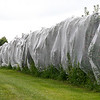 Joanne DiNardo, President of Sholan Farms, talked about the farm as she gave a tour on Tuesday afternoon, August 27, 2019.  Some hail netting they are trying out on the farm to help save the trees. SENTINEL & ENTERPRISE/JOHN LOVE