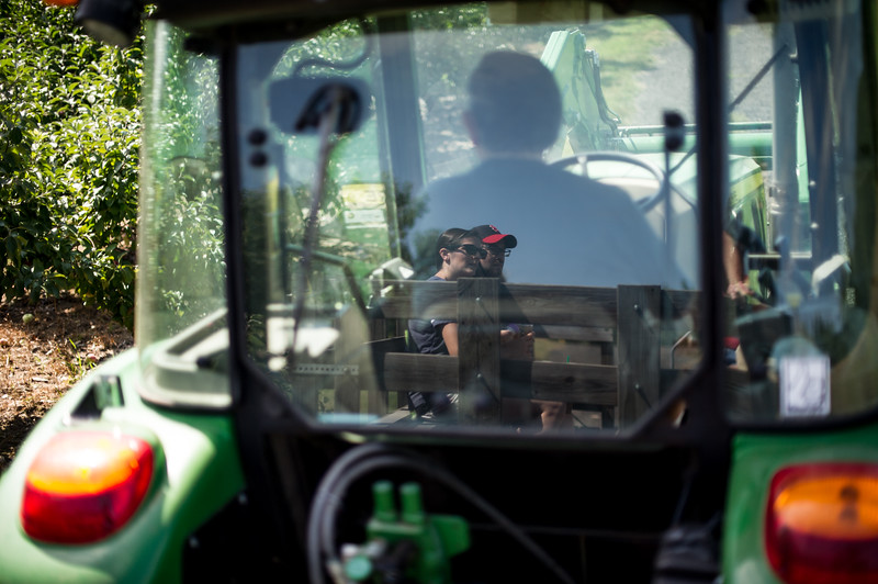 Andrew and Caitlyn Candiello of Princeton seen in the reflection of tractor opertaor Jack Keefe of Leominster on Sunday at Sholan Farm in Leominster.  Sentinel & Enterprise photo/Jeff Porter