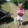 Bristol Candiello, 3, of Princeton tries one of her apples next to brother Cameron Candiello, 1, on Sunday at Sholan Farms in Leominster.  Sentinet & Enterprise photo/Jeff Porter
