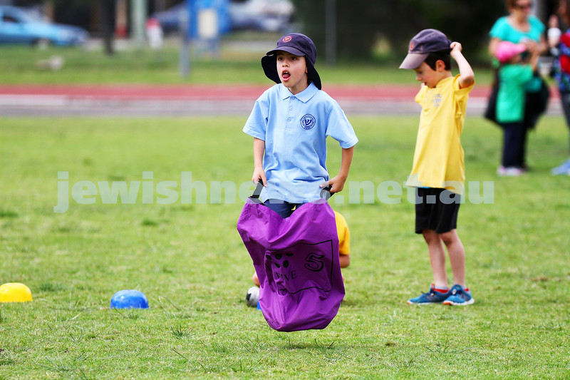 11-12-14. Sholem Aleichem sports day at Duncan McKinnon athletics track. Sack race. Photo: peter haskin