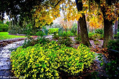 Formal Gardens Entry --- ShoIom Park, Ocala FL
