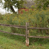 Bruentrup Farm September (2)