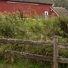Bruentrup Farm September (3)