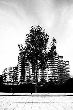 CITY+LIFE