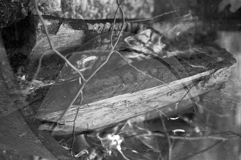 Double exposure from Kyle and my camping trip to Trout Pond Recreation Area, West Virginia. Ilford Delta 400, 2013.