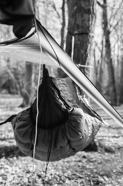 Hammock camping at Prince William Forest Park, Virginia. May 2015, Kodak Tri-X.