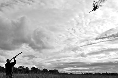 Pheasant Hunting in Victoria Australia