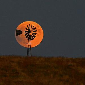 Prairie Moon