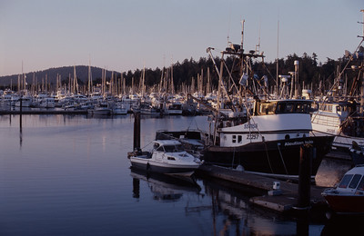 Anacortes Harbor