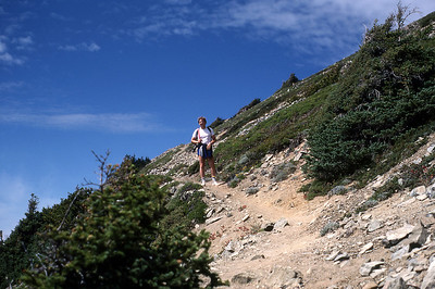 Trail on Mt. Rainier