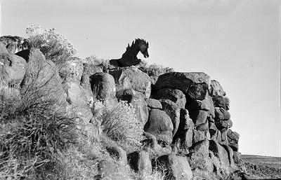 Lead Wild Horse