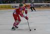 Vienna, Austria, 5. 9. 2013 - EBEL, Erste Bank Eishockey Liga, UPC Vienna Capitals vs. HC Bozen Südtirol in Albert Schultz Halle. Image shows Markus Gander (Hockey Club Bozen Südtirol).Foto: GEPA Pictures / Gerald Fischer