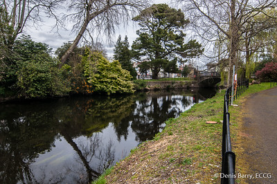 The River Lee at UCC