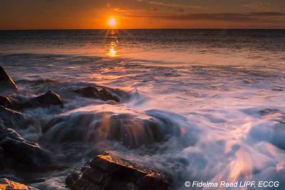 Fidelma Read Photography