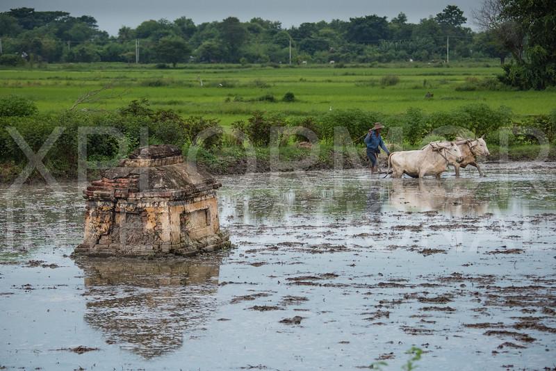 The Scenery of Burma