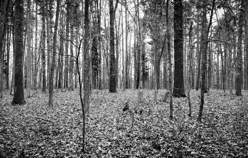 Buried in the Forest: Slave Graveyard