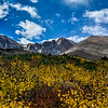Fall Foliage and Longs Peaks