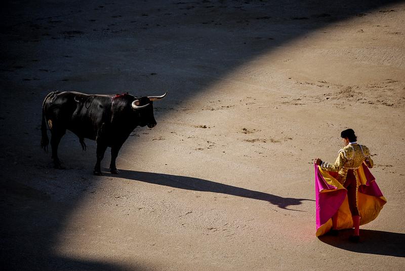 Bullfighting in Spain