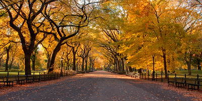 The Mall, Central Park, NYC