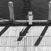 Shadows on the dock