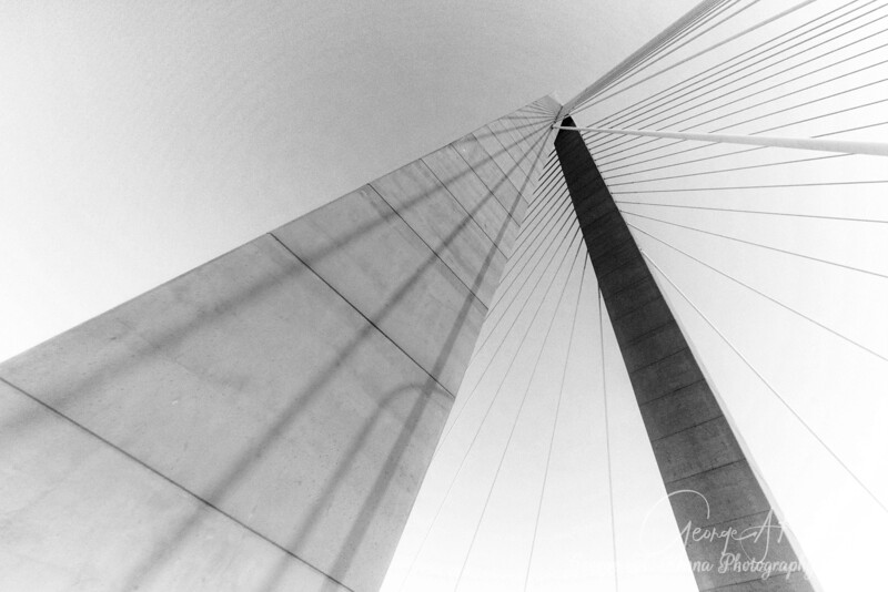 Ravenel in Black and White