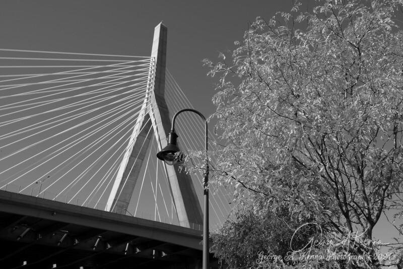 Ants eye view Black and White Zakim Bridge