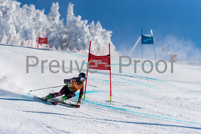 Mont-Tremblant, QC, Canada - December 20 2019:   Super Serie GS Femme at Tremblant  Photo par:  Gary Yee