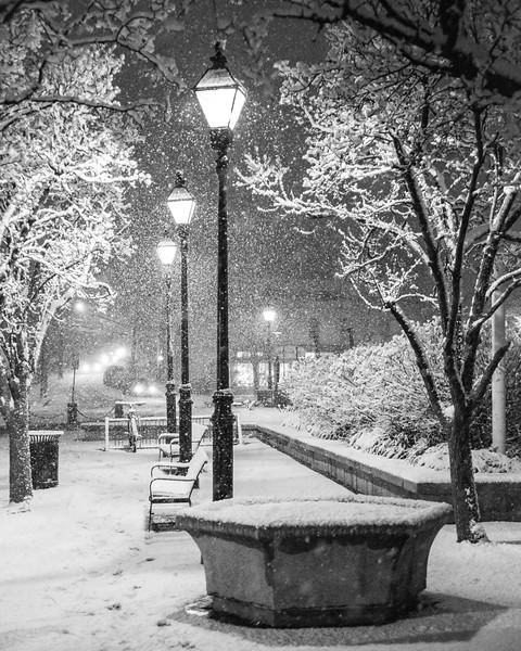 Market House Snowy Lights I