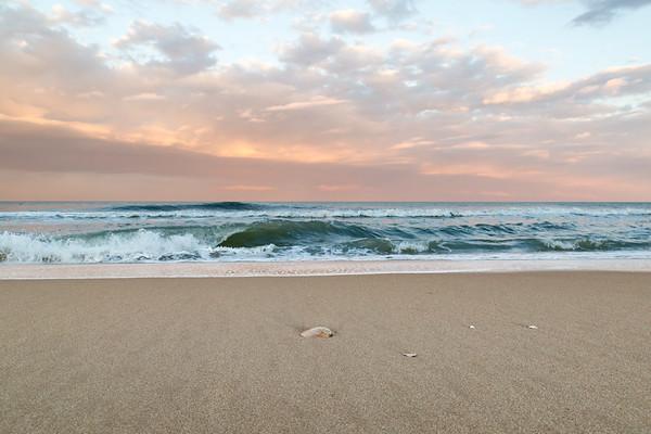 Sunset Shell OC