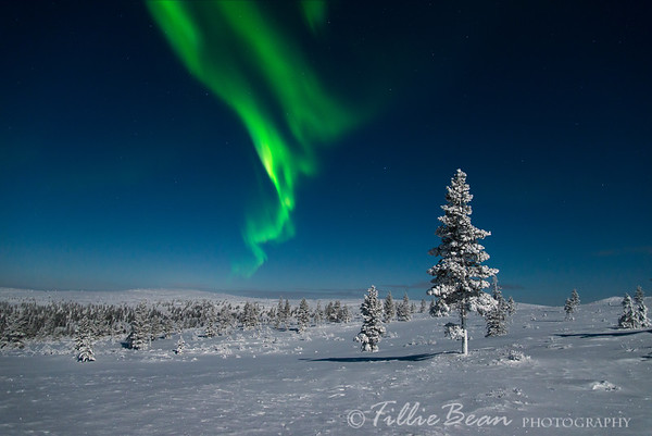 Aurora Borealis - Northern Lights