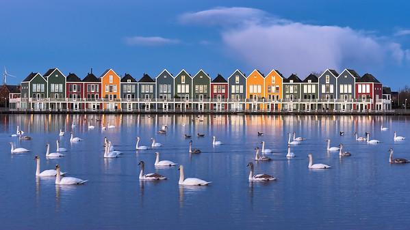Rainbow Netherlands