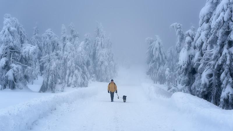 Feel the cold || Brocken, Germany