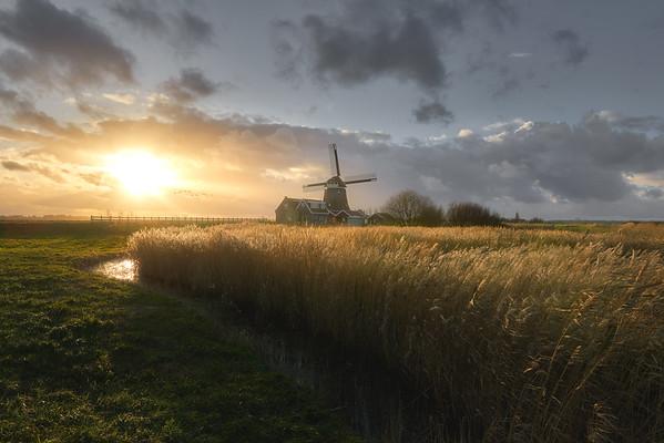 Dutch winter sunset