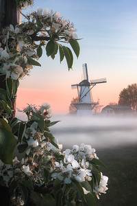 Dutch fairytale
