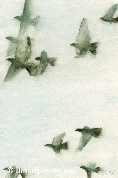 Flock of Pigeons II Watercolor Painting - Beverly Brown Art Prints